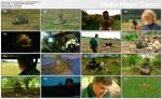 Dzika Brytania z Rayem Mearsem / Ray Mears' Wild Britain (2011) PL.1080i.HDTV.x264 / Lektor PL