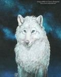[galería] Imágenes Furry Cdf66e171178032