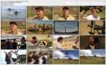 Szaleni naukowcy / Mad Scientist (2011) PL.TVRip.XviD / Lektor PL