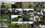 Przygoda �ycia: Wenezuela / Out of the Wild: Venezuela (2011) PL.TVRip.XviD / Lektor P