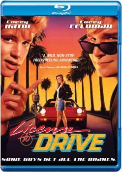 License to Drive 1988 m720p BluRay x264-BiRD